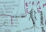 "Kihlstedt's ""Silverfish"" notes, viewable on Rabbit Rabbit Radio. Click for the Rabbit Rabbit home page"