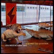 Lisa Mezzacappa: X Marks the Question
